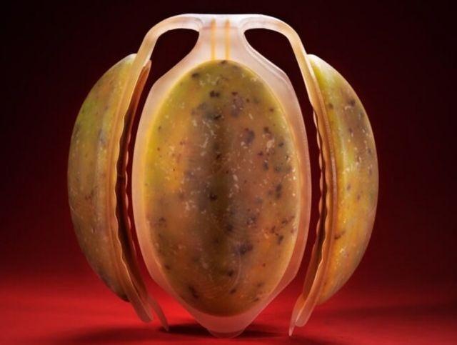 Израильский дизайнер представил искусственные фрукты