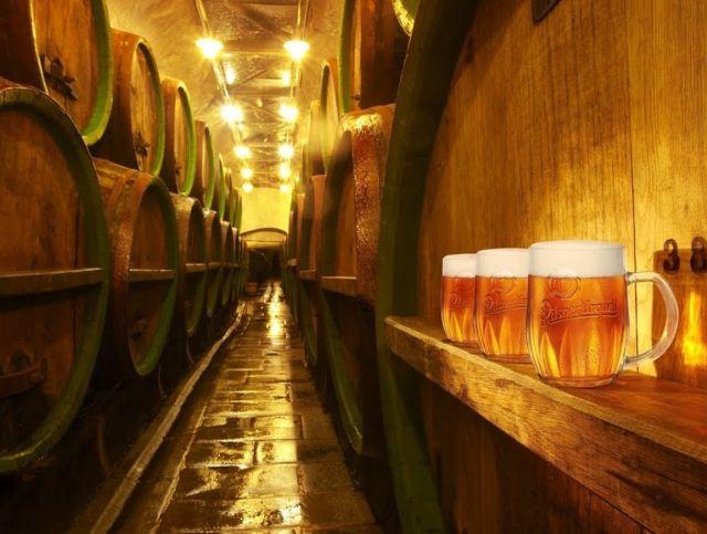 Во Франции избавятся от 10 миллионов литров нераспроданного пива