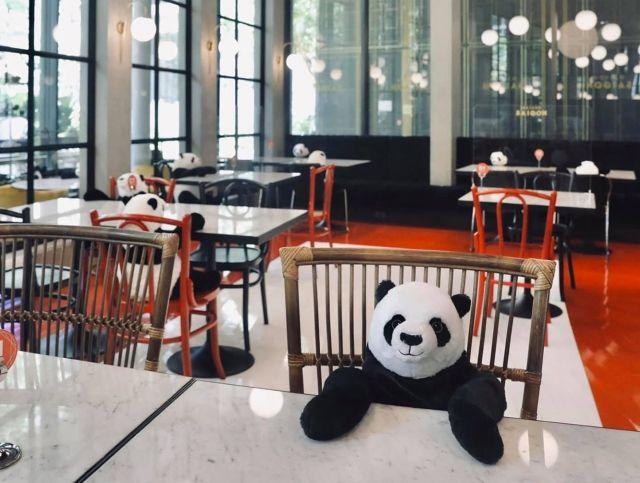 Игрушечные панды в тайском ресторане напомнят людям о социальной дистанции