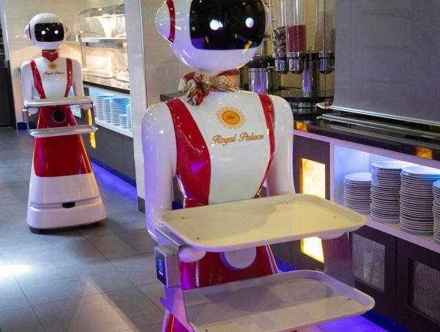 Голландский ресторан тестирует роботов-официантов
