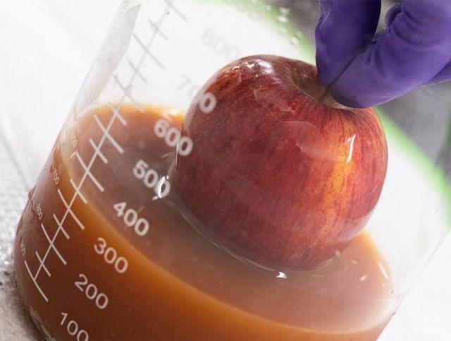 Покрытие на основе яиц продлит срок хранения фруктов и овощей