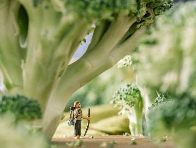 Калифорнийский фотограф создает снимки природы из продуктов питания