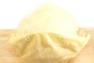 /photo/recipe/2010/12/20101211-golubci-01.jpg