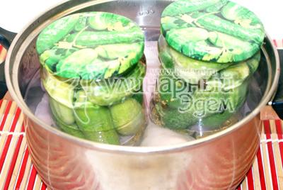 Фото рецепт приготовления маринованных огурцов.
