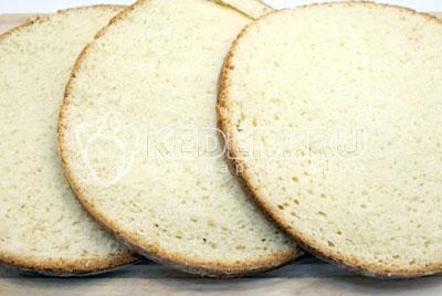 Остывший корж разрезать на 3 части. - Сливочный торт с абрикосовым джемом. Фото рецепт приготовление торта с абрикосовым джемом и сливками.