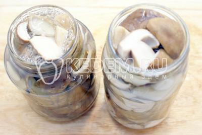 Разложить грибы по чистым баночкам шумовкой. Залить до верху маринадом