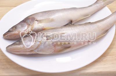 Рыбу хорошо почистить и выпотрошить