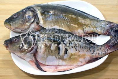 Рыбу выпотрошить, очистить и хорошо промыть. Обсушить бумажным полотенцем