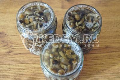 Разложить грибы по чистым баночкам и залить оставшимся маринадом по горлышко.