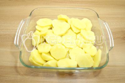 Картофель очистить. Нарезать картофель кружочками и выложить в форму смазанную растительным маслом. Немного посолить.