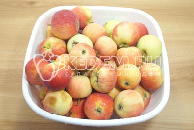 Собрать и перебрать яблоки. Хорошо вымыть и обсушить.