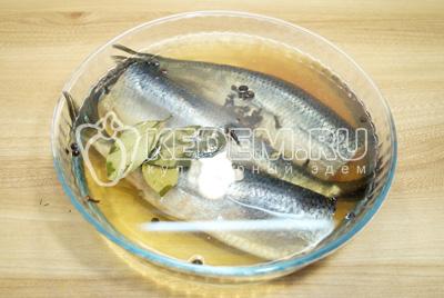 Рыбу выложить в глубокую форму и залить холодным маринадом.