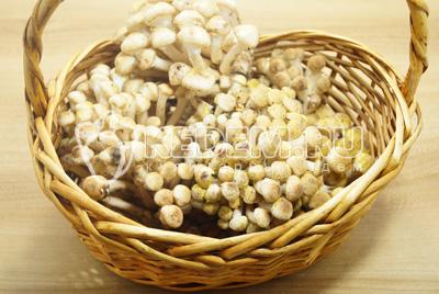 Свежесрезанные грибы перебрать от червивых.