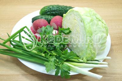 Капусту, редис, огурцы и зелень промыть и обсушить.