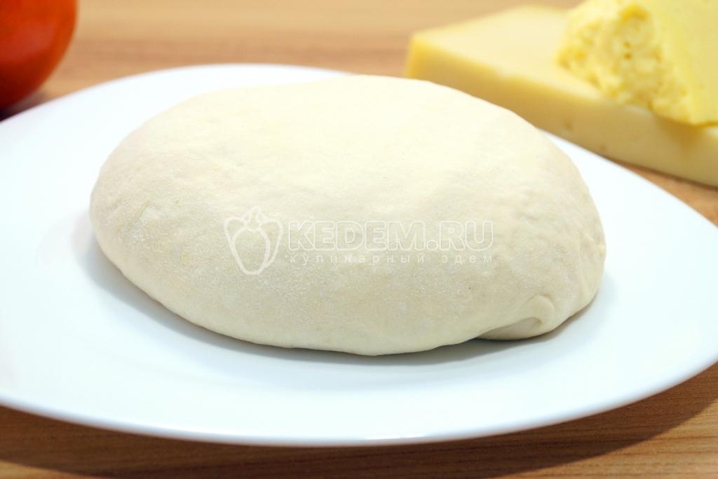 Пицца на кефире и дрожжах рецепт с фото