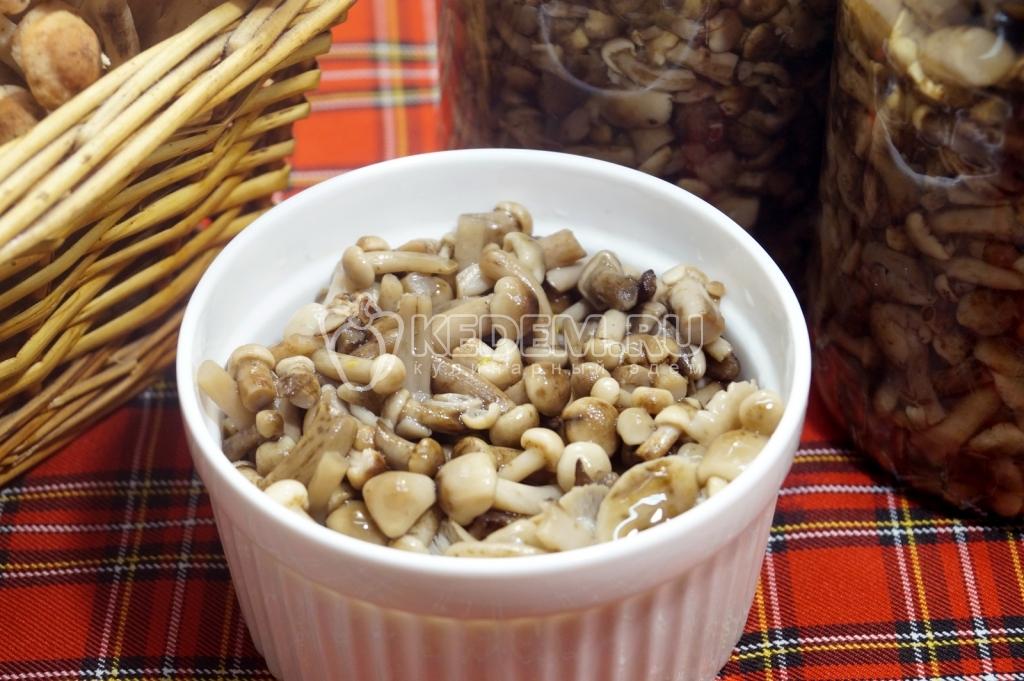 маринованные опята рецепт очень вкусные фото рецепт