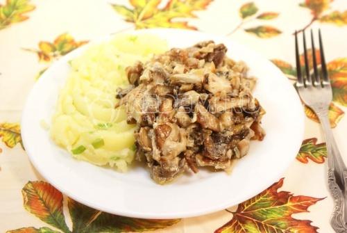 Белые грибы в сметане с картофелем
