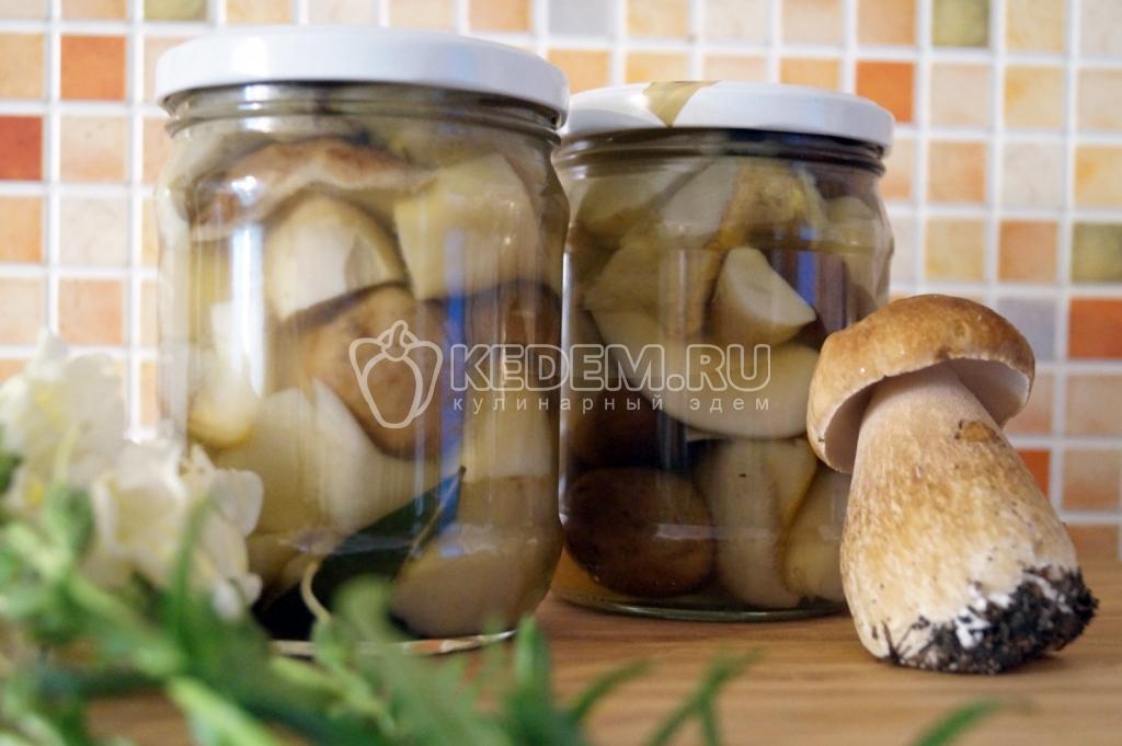 Маринование белых грибов в домашних условиях рецепты 906