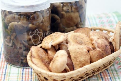 Маринованные опята на зиму. Пошаговый кулинарный рецепт с фото приготовление маринованных опят в маринаде.