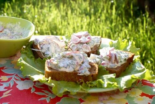 Рецепт Бутерброды с зеленью и редисом
